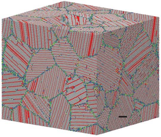 X. Li et al., Nature 464 (2010) 877
