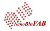 Nanobiofab