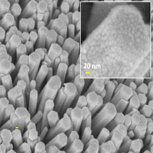 A. Ghosh et al., Journal of Alloys and Compounds 694 (2017) 394