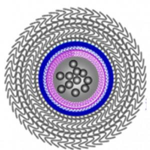 X. Liu et al., ACS Nano 16 (2016) 11385