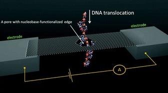 E. Paulechka et al.,  Nanoscale 8 (2016) 1861