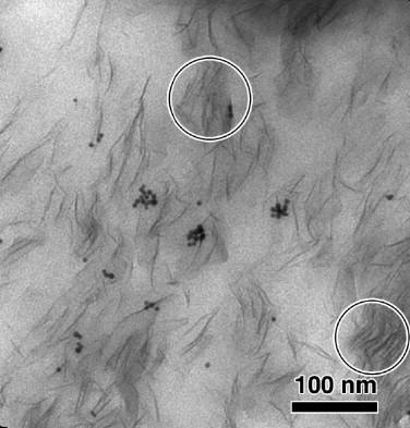H. Jinnai et al., Polymer 50 (2009) 1067