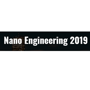 Nano Engineering 2019