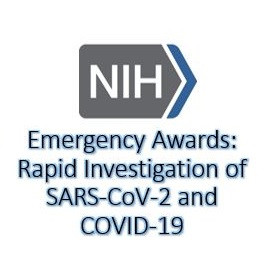 Emergency Awards: Rapid Investigation of Severe Acute Respiratory Syndrome Coronavirus 2 (SARS-CoV-2) and Coronavirus Disease 2019 (COVID-19)
