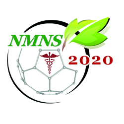 3rd Nanomedicine and Nanosafety Conference (NMNS 2020)