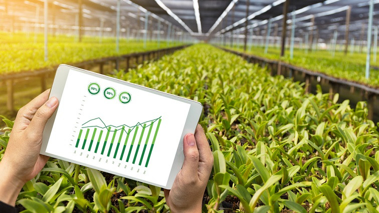 Plant Health Management by Flexible Electronics