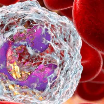 Nanoemulsion Medicine to Protect the Patients from the Side Effects of Chemotherapy