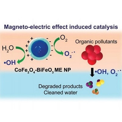 Magnetic Nanoparticles Contribution to Eliminating Water Contaminants