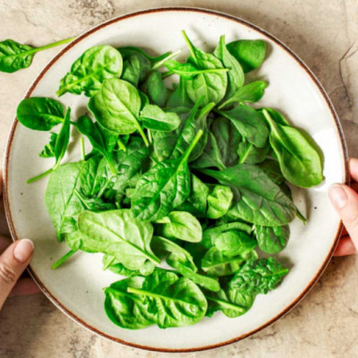Spinach: Good for Popeye and the Planet