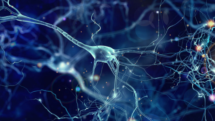 Speaking with Neurons: Nanostructured Neural Electrodes