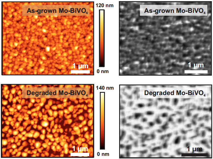 Microscopy images of Mo-BiVO4 thin films