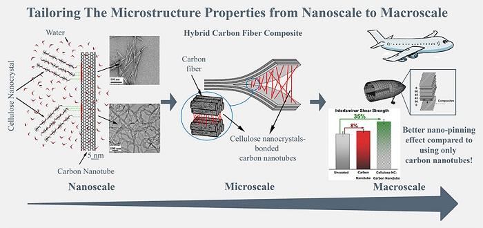 Schematic showing how cellular nanocrystals help in evenly distributing carbon nanotubes on the carbon-fiber composites