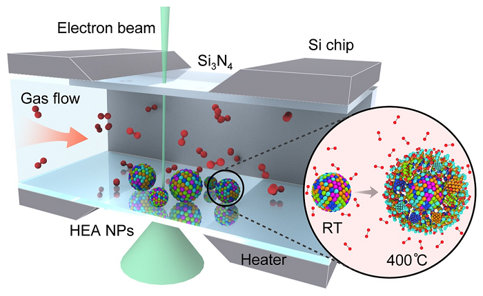 Schematic of the setup used to study the oxidation of high-entropy alloy nanoparticles (HEA NP)