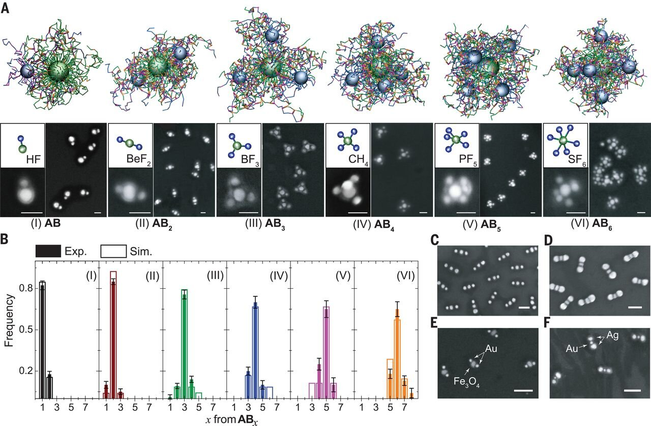 Experimental and simulation study of the CM formation