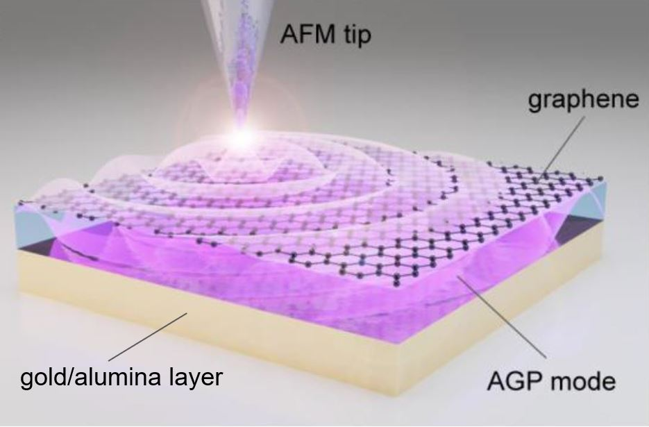 Laser-illuminated nano-tip excites the acoustic graphene plasmon in the layer between the graphene and the gold/alumina.