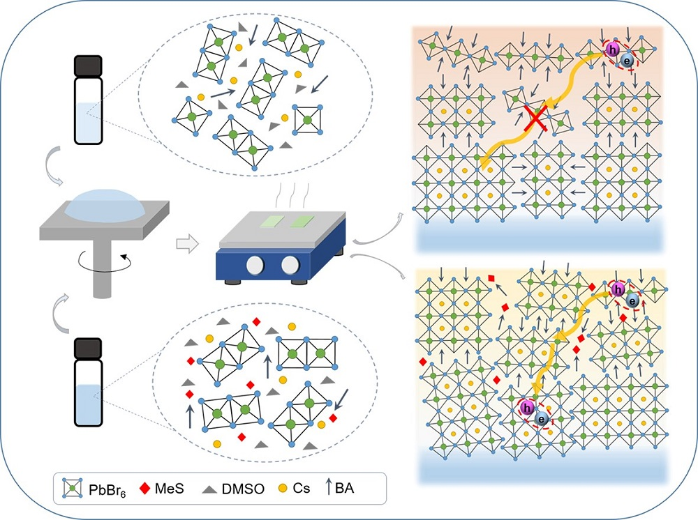 Effects of MeS on phase distribution of perovskite films