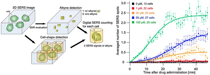 Quantitative detection of the number of SERS signals of alkynes at the single-cell level